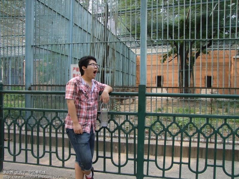 带着将要上大学的侄子塘沽紫云公园和动物园一日游
