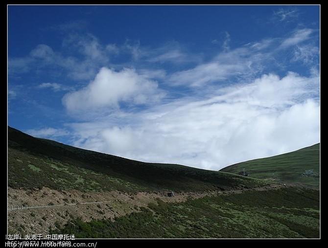 高山针叶林、蓝天白云,天气非常的好,景色也很漂亮5.jpg