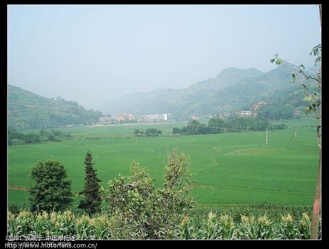 这种景色在我们这里经常见到,但在山区里看到这一片田地,还真是有点让人兴奋.jpg