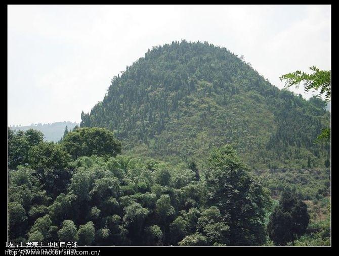 两边山上都是竹子.jpg