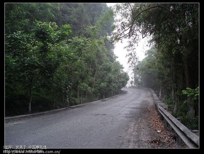 早上起来,有点轻雾,路起来感觉不错.jpg