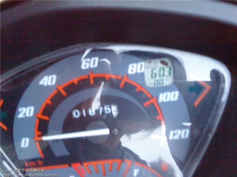 新大洲125摩托车双闪接线图