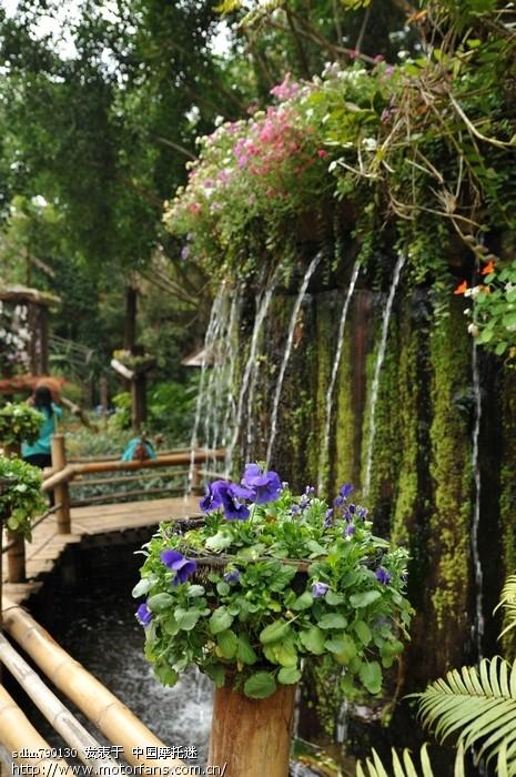 皇太后花园.jpg