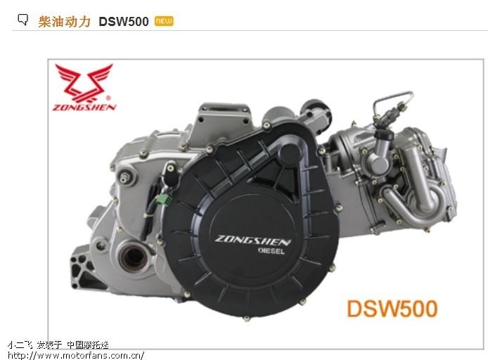 DSW500.jpg