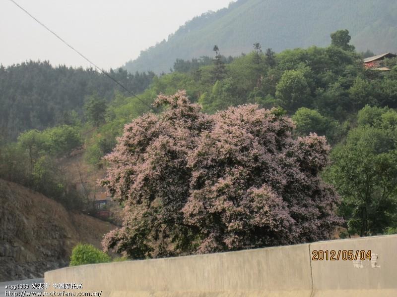 田林岑王老山--呼吸新鲜空气,感受大自然