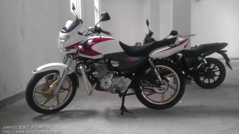 新加入超级锐箭 - 新大洲本田-骑式车讨论专区 - 摩托