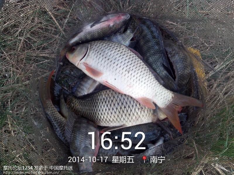2014_10_17_16_52_38.jpg