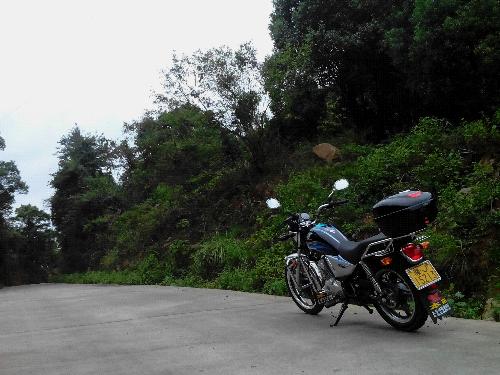 新大洲锐猛小太子——交流篇 - 新大洲本田-骑式车