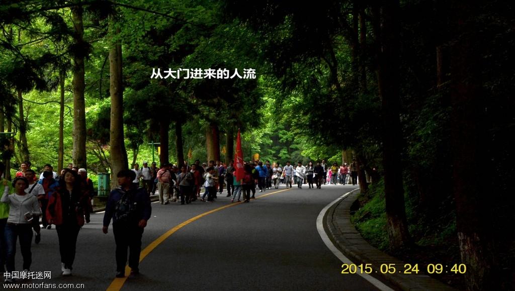 DSC_2396_副本.jpg