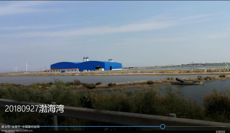 渤海湾2.png