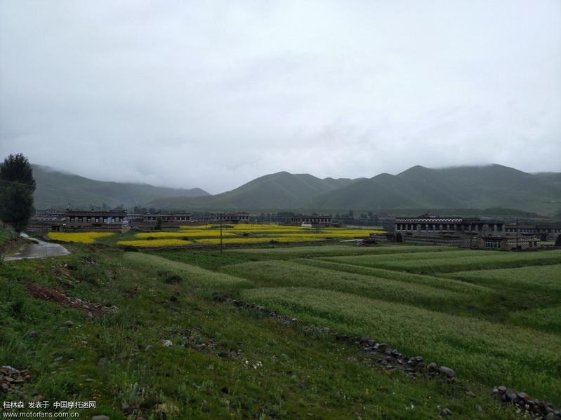 稻城 藏家村落2.jpg