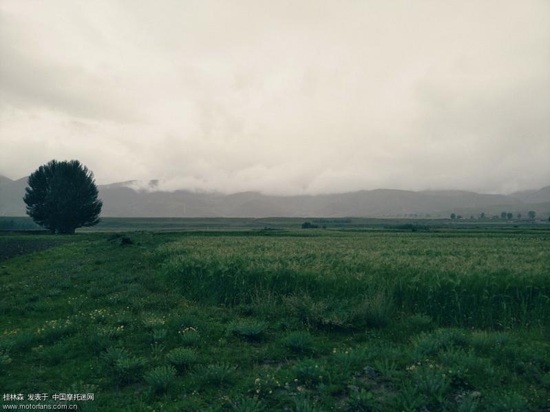 稻城郊外 远方的诗4.jpg