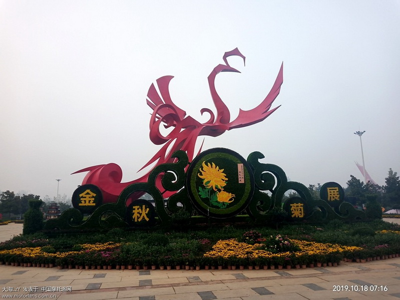 行政中心广场集合随拍几张菊展