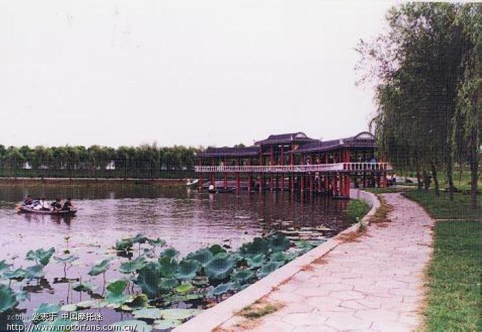 岛风景区 (洪湖欢迎你)    沙发 自己的咯   顺便介绍下洪湖蓝田生态