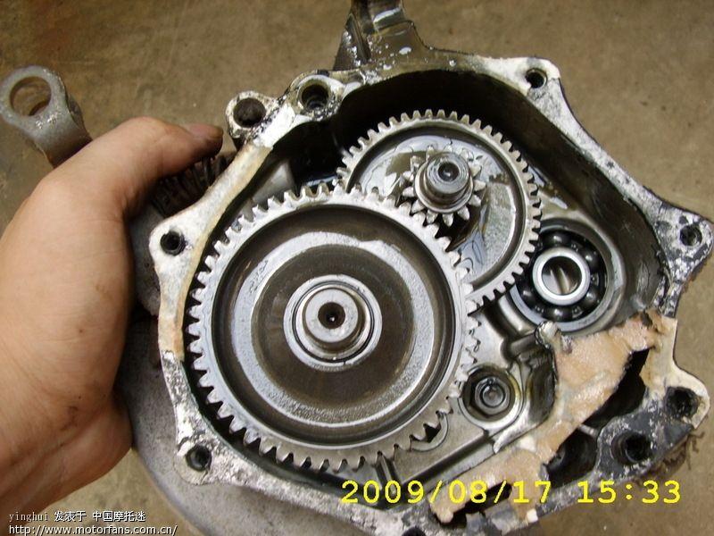 STA40144.JPG