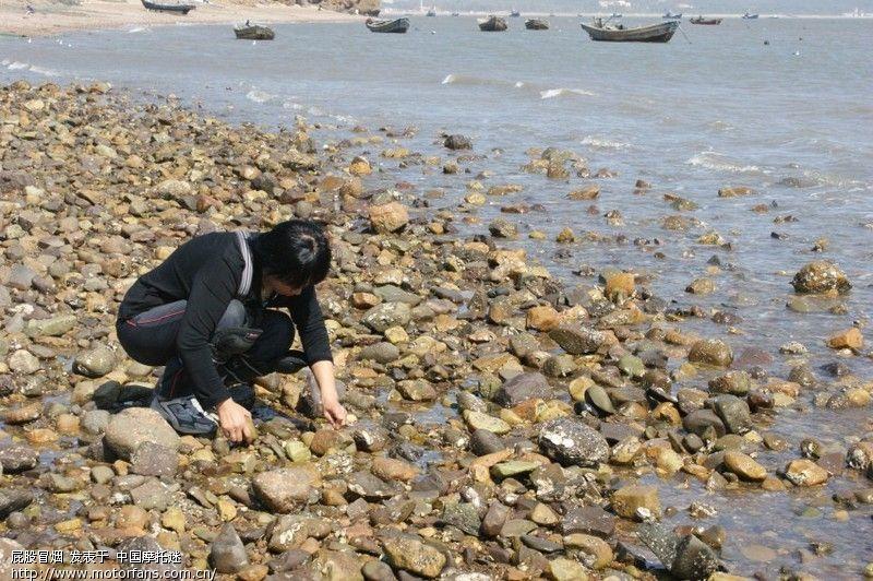 葫芦岛吃海鲜