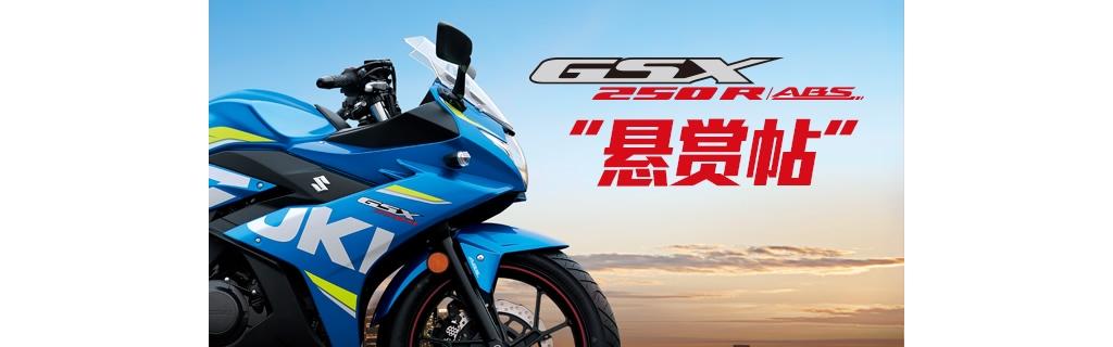 """GSX250R ABS提车作业""""悬赏帖"""""""
