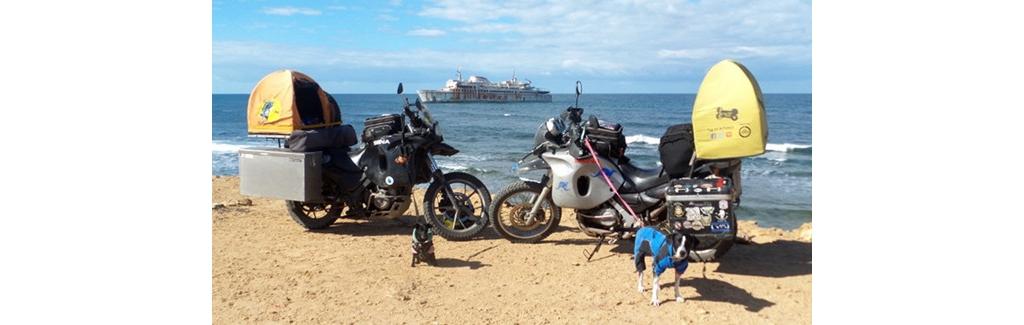 有了它 你可以骑着摩托车载狗狗周游世界